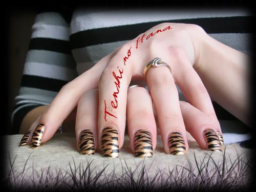 tigre chanel 1