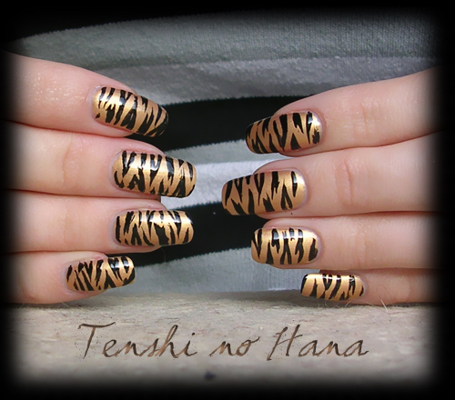 tigre chanel 2