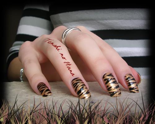 tigre chanel 3