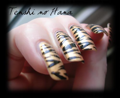 tigre chanel 4