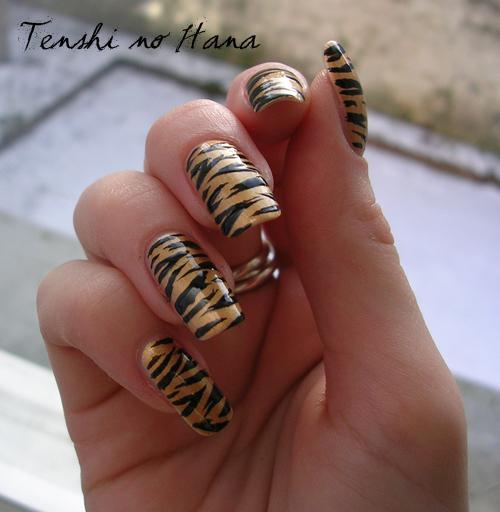 tigre chanel 6