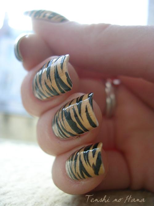 tigre chanel 7