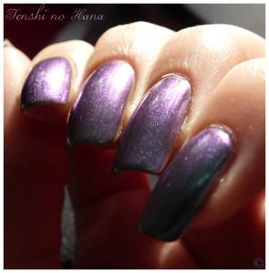 Aqua violet 3