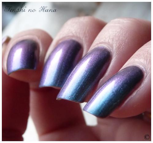 Aqua violet 4