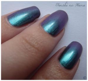 Aqua violet 5