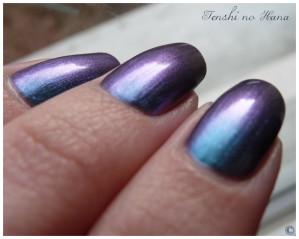 Aqua violet 6