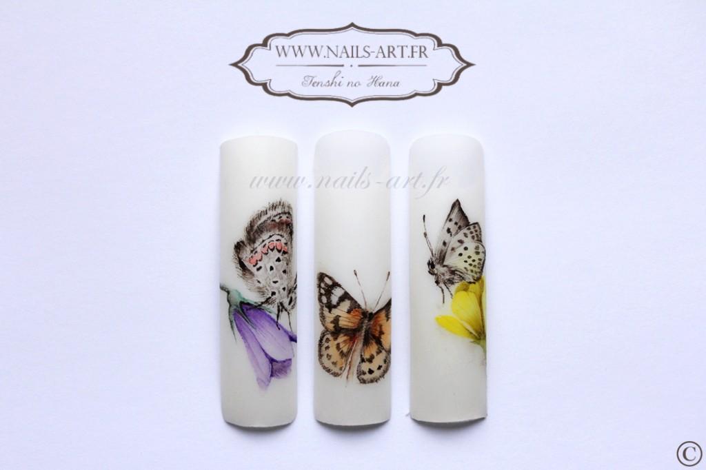 2014 août aquarelle papillons