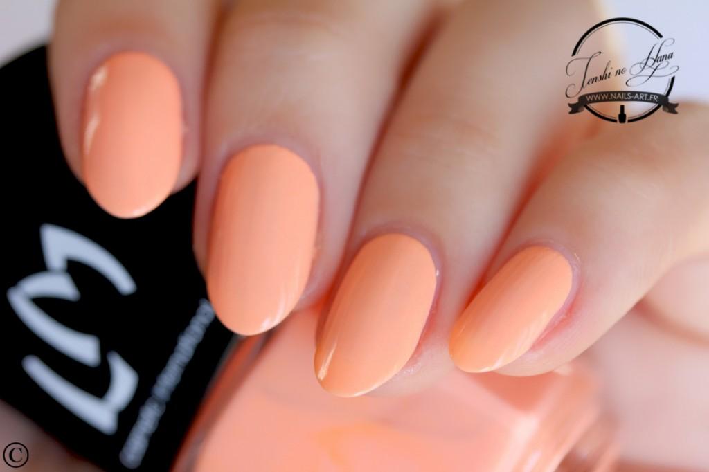 Lollipop Orange Lolly 1